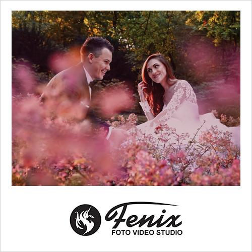 Fenix Video Studio