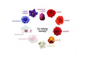 Jakie uczucia symbolizują kwiaty?