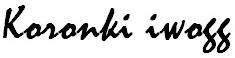 Koronki iwogg to ręcznie wykonana biżuteria ślubna